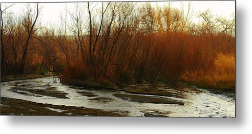 Stream Metal Print featuring the photograph Stream by Patrick Short