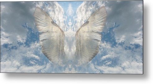 Sky Metal Print featuring the photograph Wings 1 by Bob Bennett