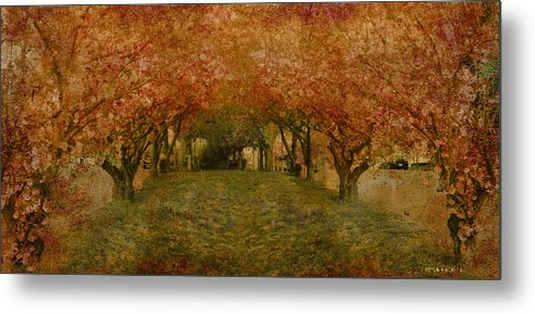 Garden Tree Trees Flowers Metal Print featuring the photograph In My Garden by Inesa Kayuta