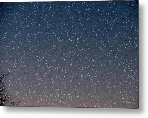 Metal Print featuring the photograph Starry Morning Sky by Luciana Seymour