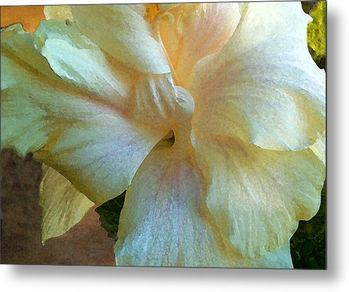 Hawaiian Flowers Metal Print featuring the photograph Evening Hibiscus by James Temple