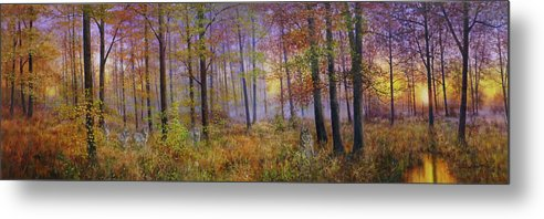 Wolf In A Fall Scene Metal Print featuring the painting Autumn Wolves by Bill Makinson