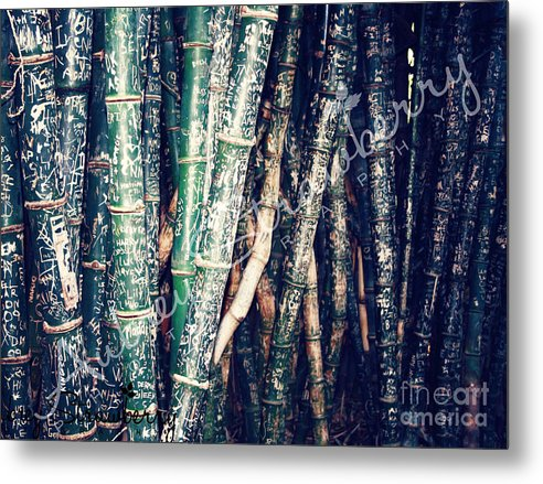 Landscape Metal Print featuring the photograph Urban Bamboo by Aubrey Strawberry