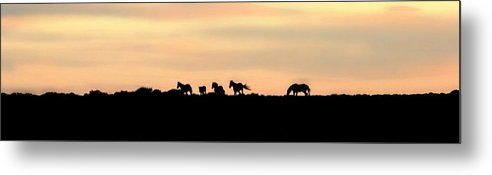 Abstract Metal Print featuring the photograph Off Into The Sunset by Donna Duckworth