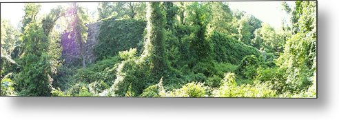 Fort Lee Metal Print featuring the photograph Palisades 12 by Anthony Trott