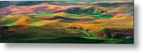 Palouse Metal Print featuring the photograph The Palouse by Hua Zhu