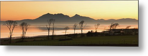 Horizontal Metal Print featuring the photograph Bare Trees At Coast by Image by Peter Ribbeck