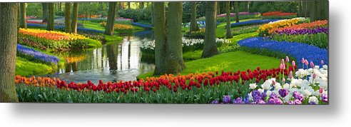 Scenics Metal Print featuring the photograph Spring Flowers In A Park by Jacobh