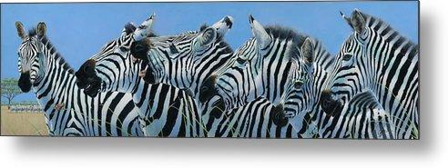 Zebra Metal Print featuring the painting Serengeti Serenade by Durwood Coffey