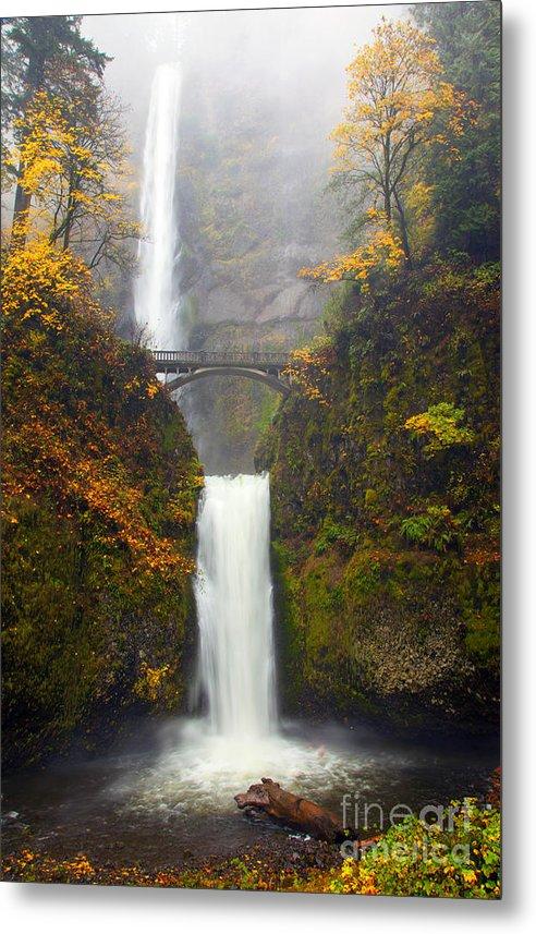 Multnomah Autumn by Mike Dawson