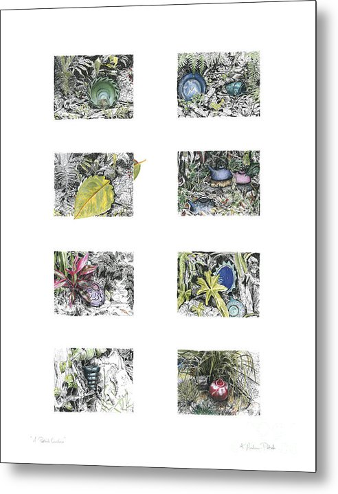 Tropical Metal Print featuring the drawing A Potters Garden by Kerryn Madsen-Pietsch