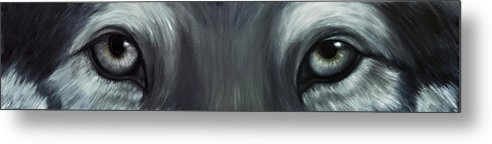 Eyes Metal Print featuring the painting Gray Wolf Eyes by Darlene Green