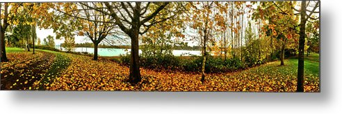 Photography Metal Print featuring the photograph Passage Through The Fall by Christopher Phelps