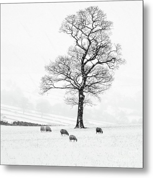 Farndale Winter by Janet Burdon