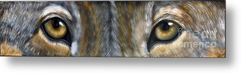 Wolf Metal Print featuring the painting Wolf Eyes by Darlene Green