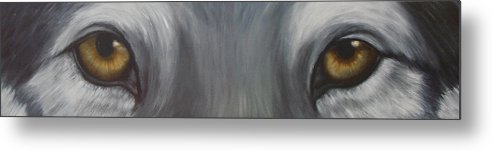 Wolf Metal Print featuring the painting Grey Wolf by Darlene Green