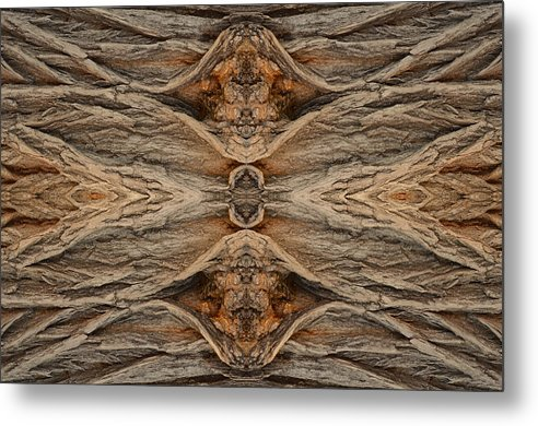 Photography Metal Print featuring the digital art Tree Bark At Park Near Library by Russ Lopez
