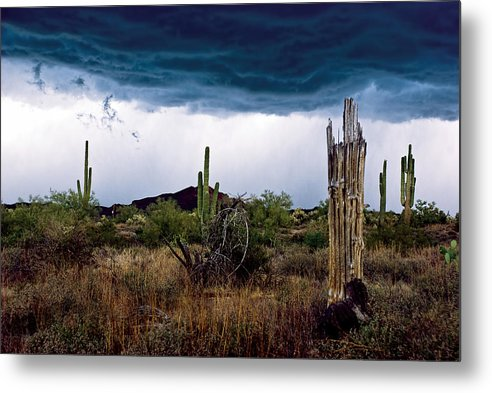 Desert Cactus Storms at the Superstitions Mountains by Dave Dilli
