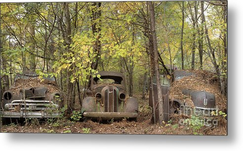 Fall in the Cars by Linda D Lester
