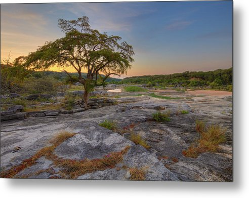 Summer Morning in the Texas Hill Country 825-4 by Rob Greebon