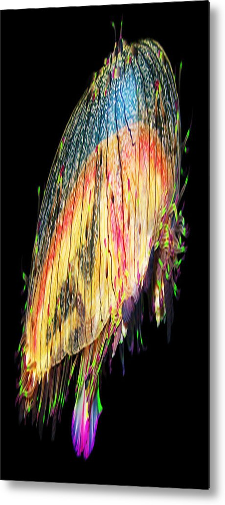 Ascend Metal Print featuring the photograph Ascending by Bruce Iorio