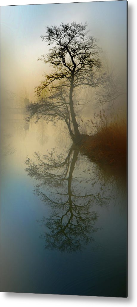 Silence Metal Print featuring the pyrography Early Morning by manhART