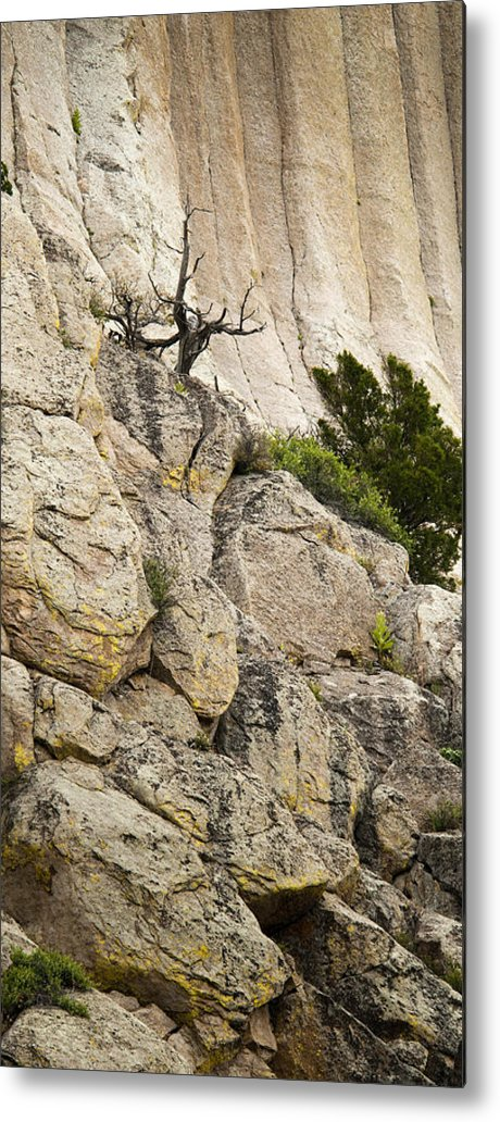 Cliff Metal Print featuring the photograph Natures Selection by Chad Davis
