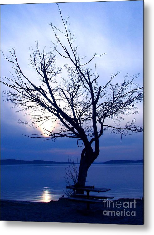 Emotion Metal Print featuring the photograph Am I Blue? by Chris Anderson