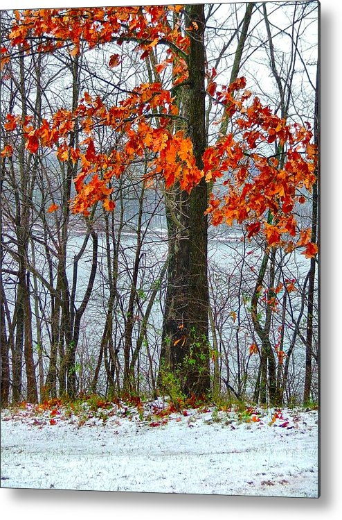 Autumn Leaves Metal Print featuring the photograph Autumn In Winter by Julie Dant