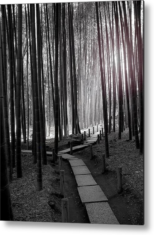 Japan Metal Print featuring the photograph Bamboo Grove At Dusk by Larry Knipfing