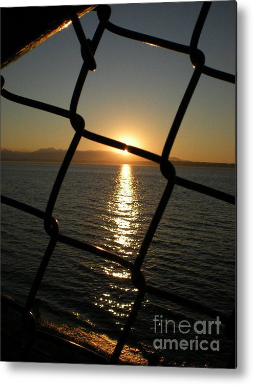 Photograph Metal Print featuring the photograph Beyond The Chains by Andrea Bush