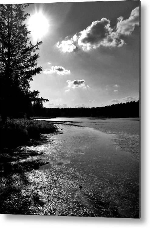 Beaver Meadows Metal Print featuring the photograph Cereberal Achromatopsia by Anthony Thomas