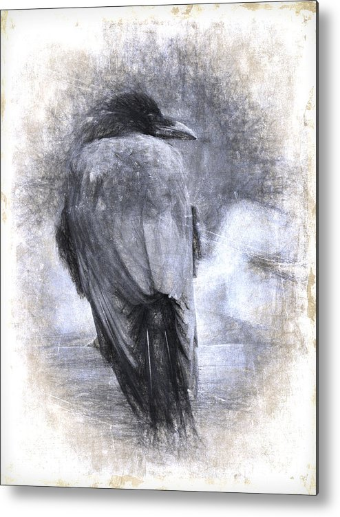Crow Metal Print featuring the photograph Crow Sketch Painterly Effect by Carol Leigh