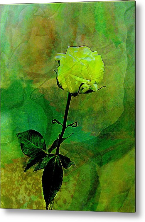 Rose Metal Print featuring the photograph Enduring Yellow Rose by Shirley Sirois