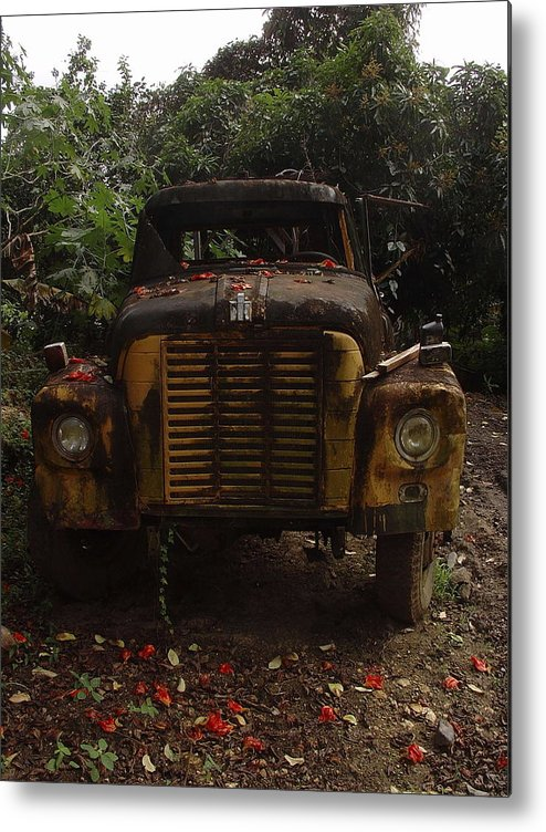 Michael Robert Hartman Photography Metal Print featuring the photograph Flowered by Michael Robert Hartman
