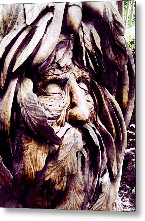 Metal Print featuring the photograph Lwv20032 by Lee Wolf Winter