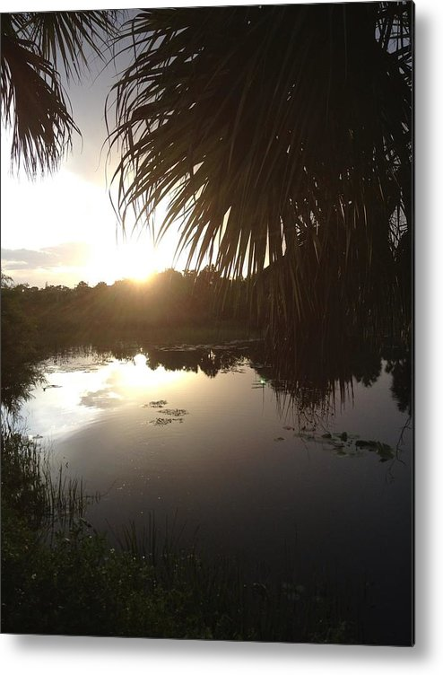 Not Quite Black And White Sunset Metal Print featuring the photograph Not Quite Black And White - Sunset by K Simmons Luna