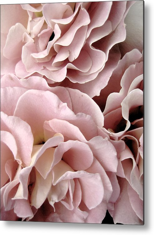 Fine Art Photography Metal Print featuring the photograph Pink Petal Profusion by Ann Powell