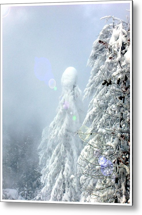 Landscape Metal Print featuring the photograph Snowy Trees by Kae Cheatham