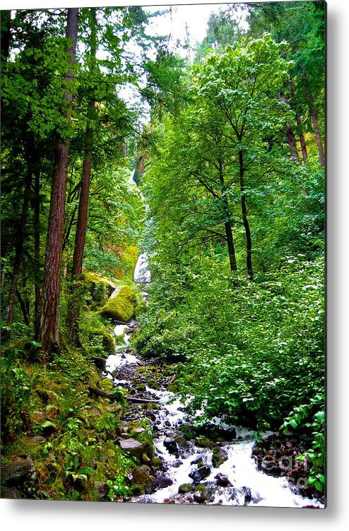 Cascade Mountains Metal Print featuring the photograph Summertime In The Cascades by Brad Gravelle