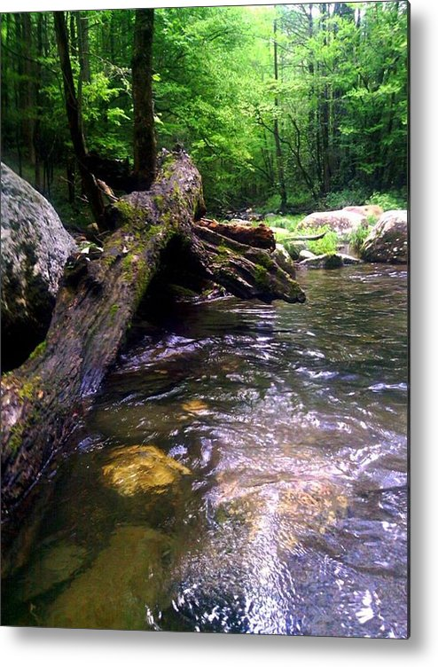 River Metal Print featuring the photograph The Fallen by Dwayne Gresham