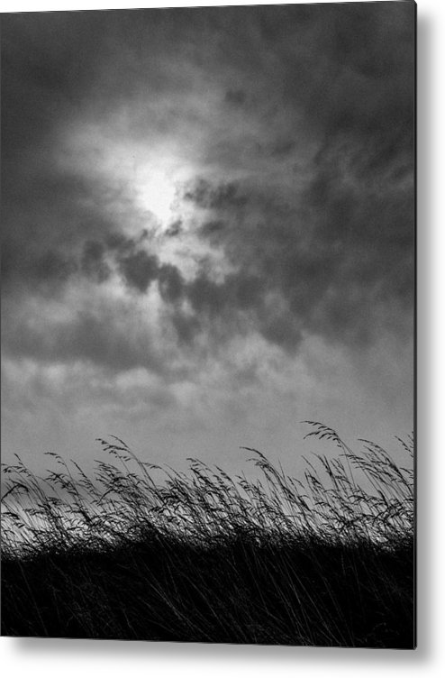 Black Metal Print featuring the photograph The Wind That Shakes The Grass by Hakon Soreide