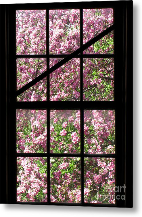Window Metal Print featuring the photograph Through An Old Window by Olivier Le Queinec