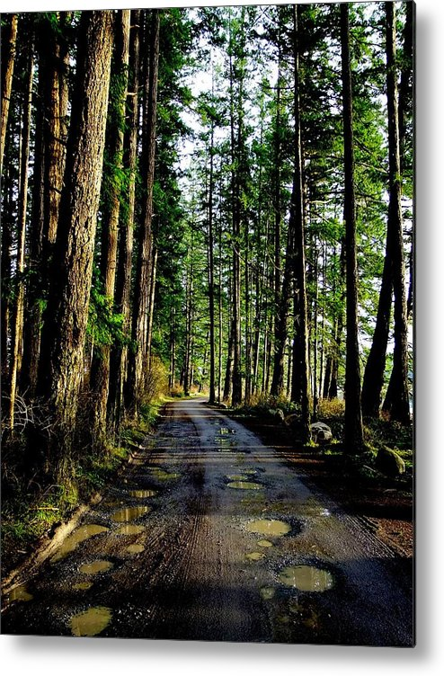 Park Roadway. Metal Print featuring the photograph Winter Potholes. by Will LaVigne
