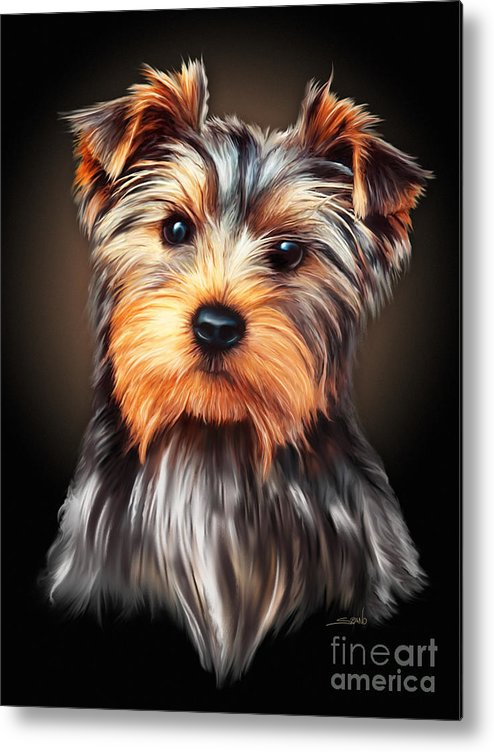 Spano Metal Print featuring the painting Yorkie Portrait By Spano by Michael Spano