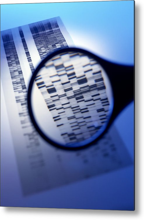 Magnifying Glass Metal Print featuring the photograph Dna Autoradiogram by Tek Image