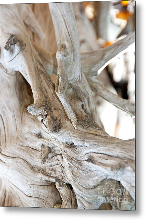 Abstract Metal Print featuring the photograph Abstract Wood by Dana Kern