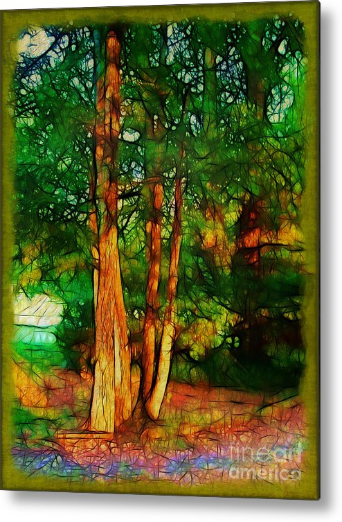 Trees Metal Print featuring the photograph Afternoon Delight by Judi Bagwell