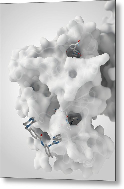 Molecule Metal Print featuring the photograph Cancer Protein And Drug Complex by Ramon Andrade 3dciencia