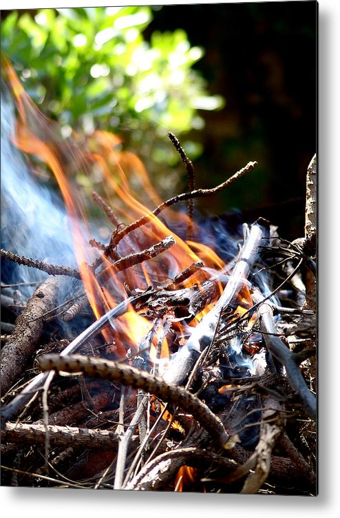 Flame Metal Print featuring the photograph Flame by Alessandro Della Pietra